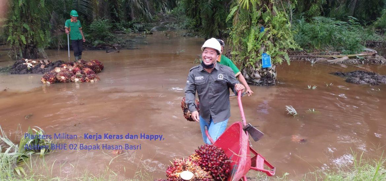 Planters Militan - Kerja Keras dan Happy, Asisten BHJE 02 Bapak Hasan Basri