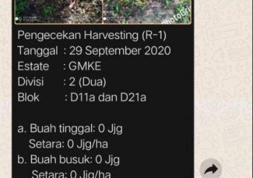 """Pengecekan Mutu Hancak GMKE 2 Oleh Quality Assurance """"2,66 butir/ha"""""""