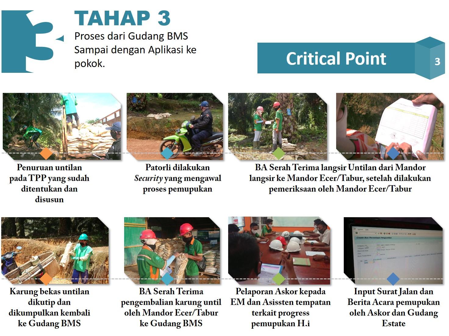 Critical Point Tahap 3b