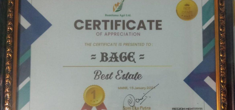 """Penghargaan Di Tahun 2020 Untuk Estate BAGE Menjadi """"The Best Estate"""""""