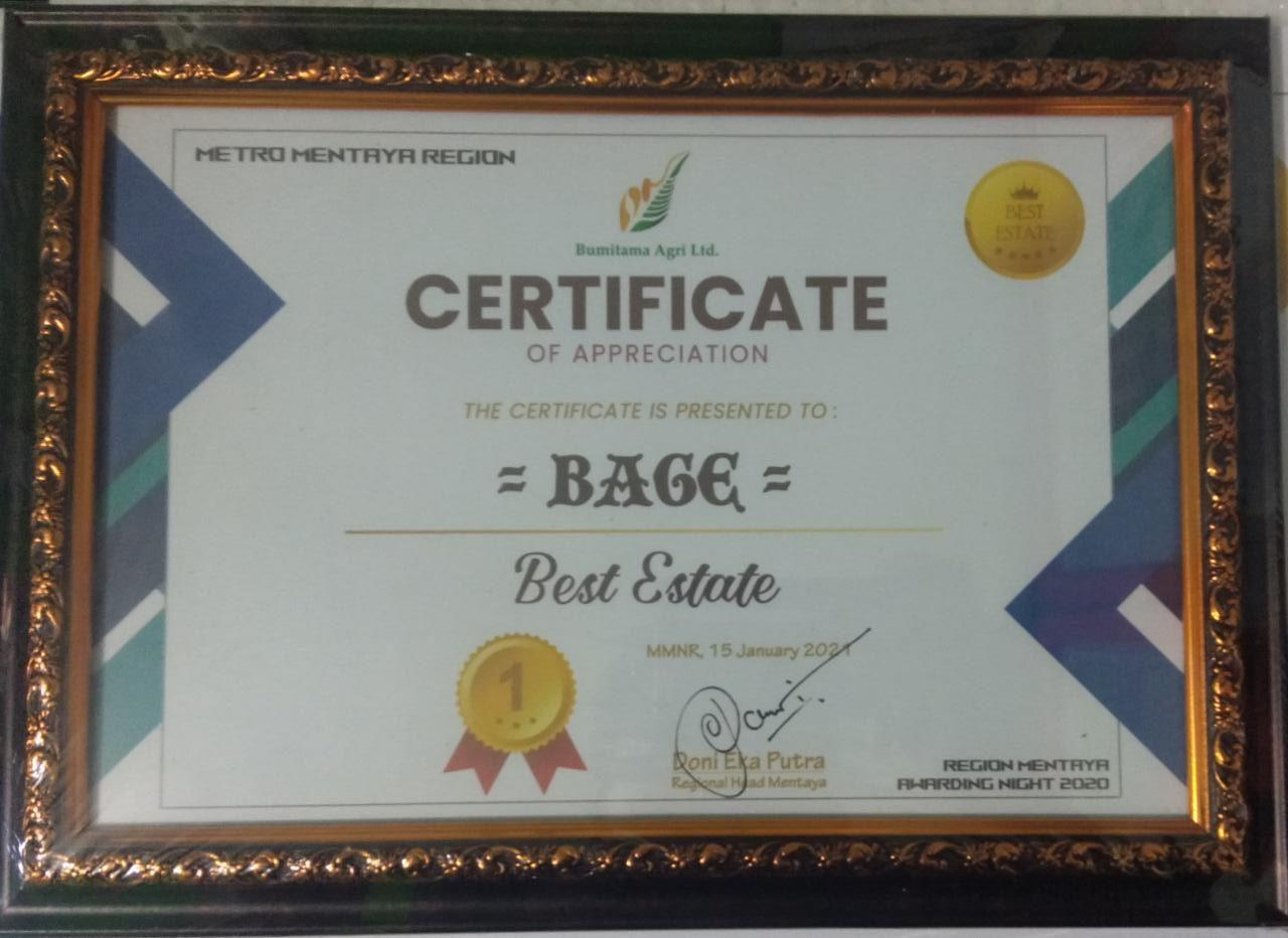 Piagam Penghargaan Untuk Estate Terbaik Dari Bpk. Regional Head Menatay