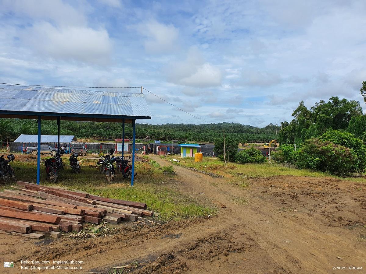 View Pembibitan BDME Mangkup Area 1 - Foto diambil pada hari Selasa, 27.01.2021