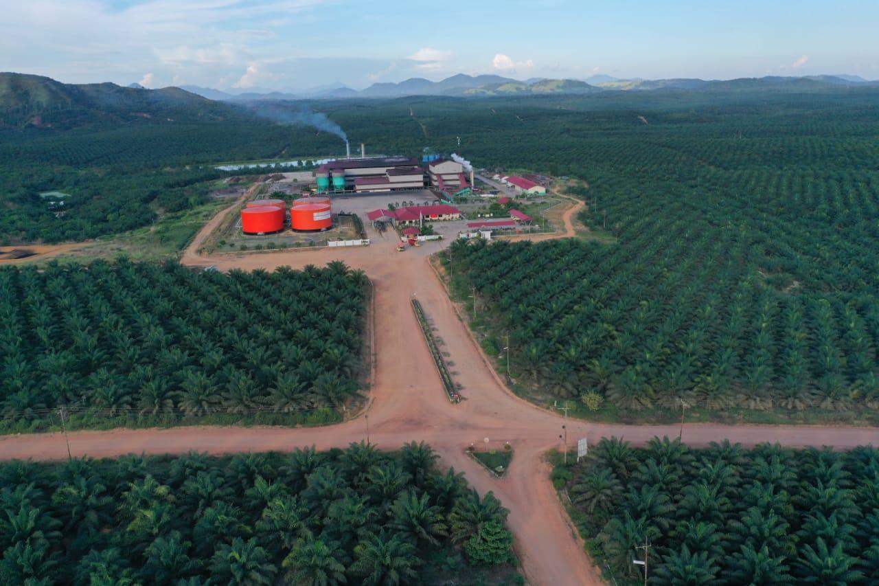 Bukit Belaban Mill - BBNM Area 10 Region Sei Melayu