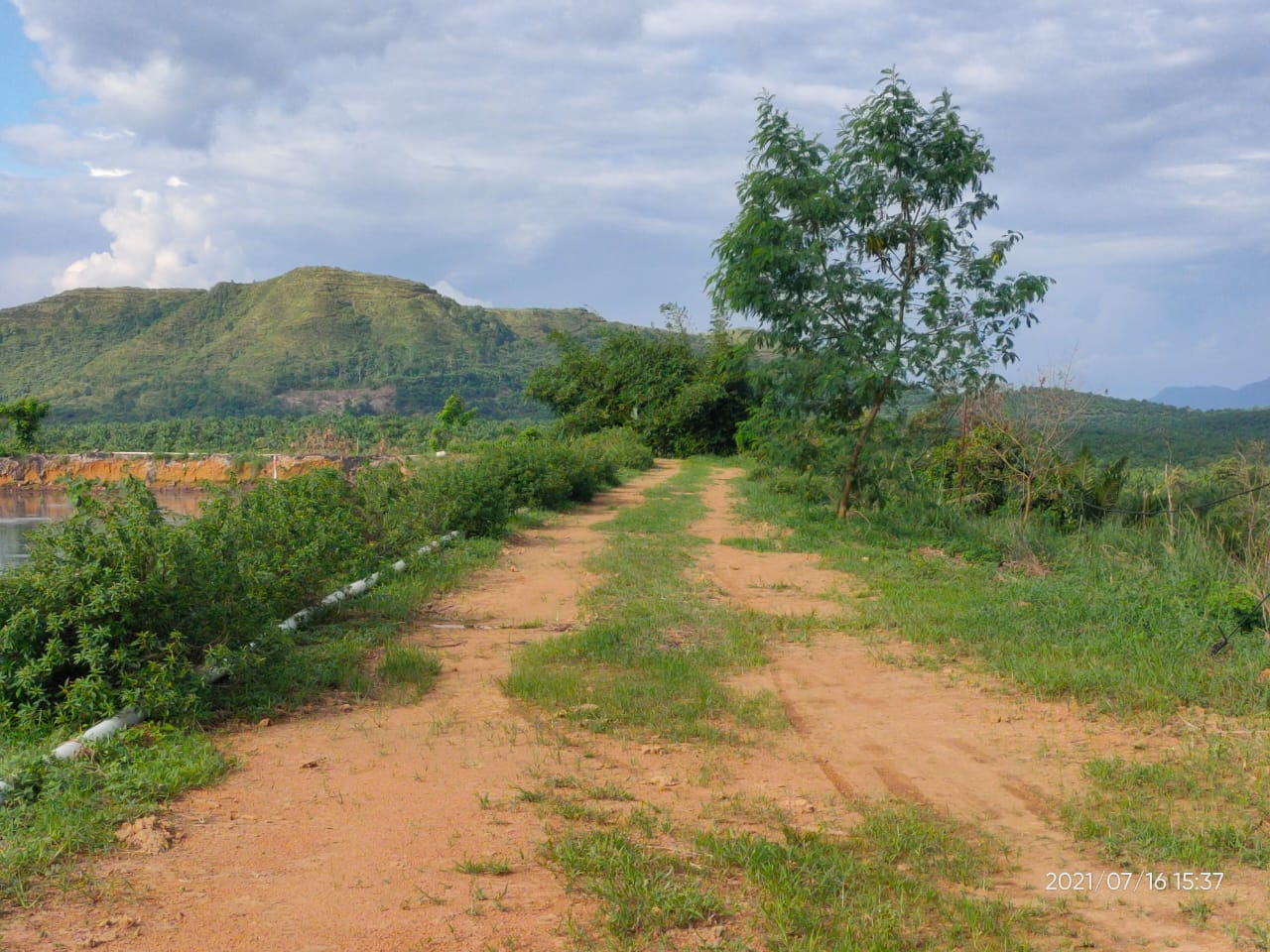 Jalan tanggul BBNM menuju Rumah Pompa